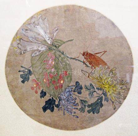 A Chinese round drawing mounted on silk, with grass hopper W25cm glazed and framed.