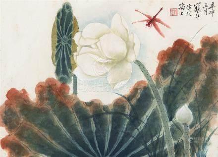 江寒汀(1903~1963) 1951年作 荷花蜻蜓 镜框 设色纸本