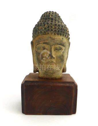 A terracotta bust modelled as the Buddha on a hardwood stand, overall h. 25.