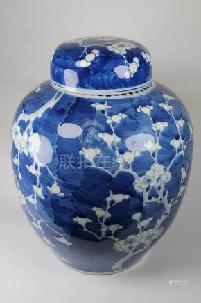 Chinese Blue/White 'Prunus' Ginger Jar & Cover