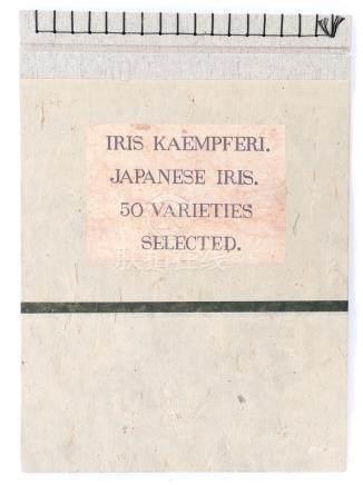 JAPON, 1910 1920
