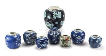 Eight Chinese porcelain ginger jars, including a large example hand painted with prunus flowers
