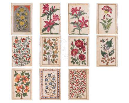 A GROUP OF ELEVEN FLOWER AND TREE MINIATURE PAINTINGS –…