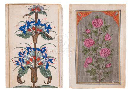 TWO INDIAN MINIATURE PAINTINGS OF BLOSSOMS
