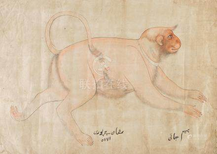 MONKEY AND BABY NORTH INDIA, LATE 18TH/EARLY 19TH CENTURY