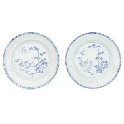 Pair of Chinese dishes in porcelain, 18th Century.
