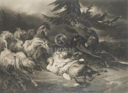 D'après REYNOLDS.    Mazeppa.    Gravure en noir.    66 x 83 cm. (à vue)  (Cadr