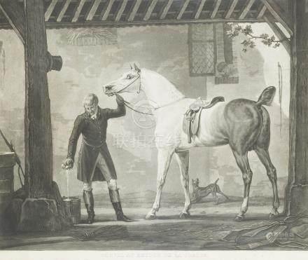 - Lot de DEUX GRAVURES sur le cheval d'après Carle VERNET:    Cheval bouchonné