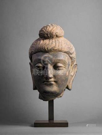 Kopf eines Buddha. Meisterlich ausgeführte Skulptur. Frisur mit welligem Haar und Knoten im