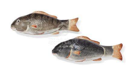 A PAIR OF FISH SAUCE TUREENS AND COVERS