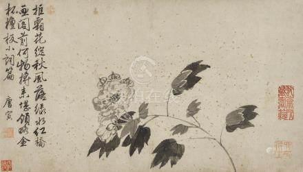 唐寅 1470 - 1524 芙蓉