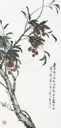 蔡孝侶 荔枝紅