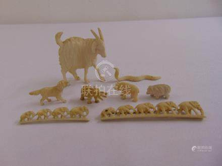 A quantity of composition and bone of animals (8)