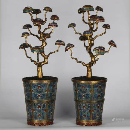 CHINESE CLOISONNE PLANTERS, PAIR
