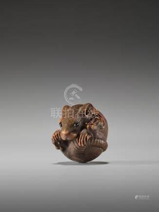 A FINE WOOD NETSUKE OF A COILED RAT BY MASANAO