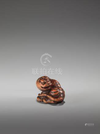 A FINE WOOD NETSUKE OF A TIGER BY TOMIN