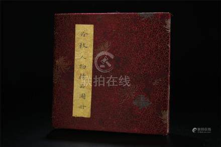 Rare Chinese album ink/colour painted of