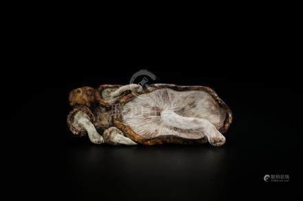 A Porcelain 'Mushroom' Décor