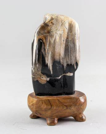 Fossilized Wood Striped Scholar's Stone with Stand