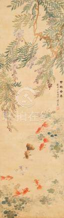黄山寿-紫绶金章