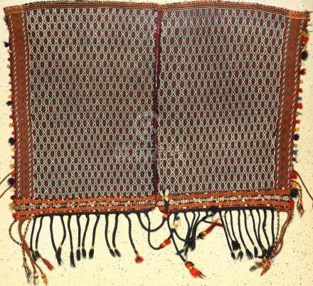 Rare Qashqai 'Horse Cover' Flatweave 'Boyer- Ahmad Tribe',