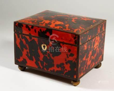 A DUTCH TORTOISESHELL BOX with sandalwood interior on bun feet. 15cms long.