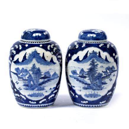 Pair of blue and white jars and covers Chinese, 19th Century each having shaped panels painted