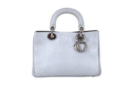 Christian Dior Metallic Silver Bullcalf Diorissimo