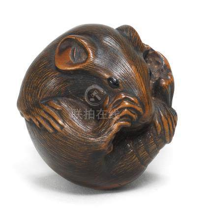A wood netsuke of a coiled mouse  By Masanao, Yamada, Ise Province, Edo period (1615-1868), 19th century