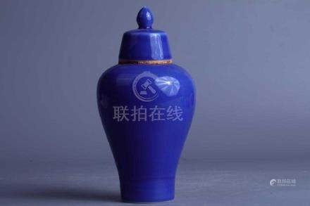 Chinese Qing Blue Glazed Plum Bottle with Cover
