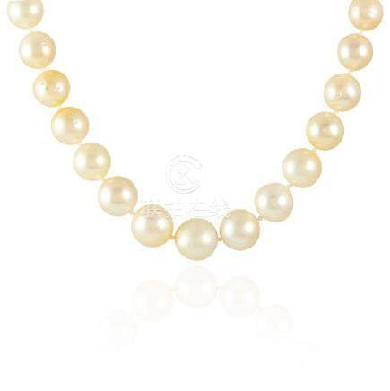A SOUTH SEA PEARL AND DIAMOND NECKLACE in 18ct yellow