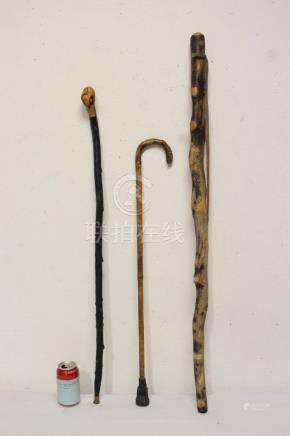 3 vintage canes