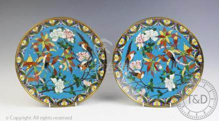 A pair of early 20th century Japanese cloisonne chargers, decorated with birds and flowers,