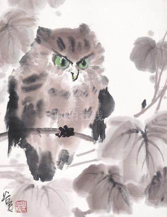 陳谷長  貓頭鷹