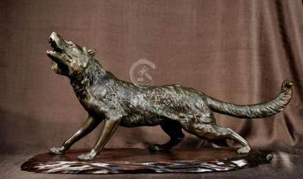 Japanese Meiji Bronze Wolf - Signed - Tokyo School