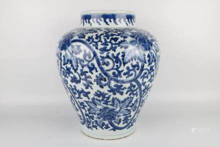 Qing Dynasty Blue and White Jar