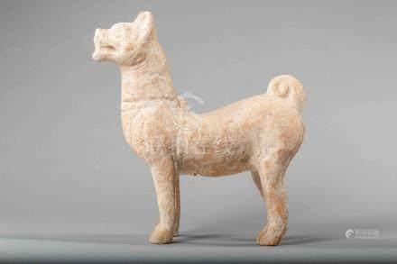 Figuration d'un chien debout en arrêt à l'allure fière. Terre cuite à traces d'
