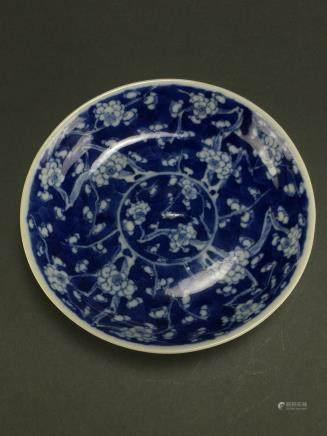 Kangxi: Blue and White Prunus Dish