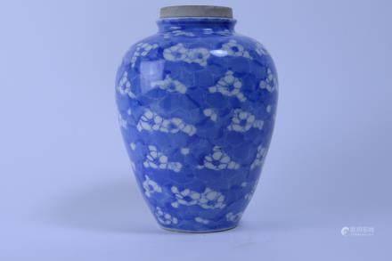 Kangxi: Blue and White Prunus Ginger Jar