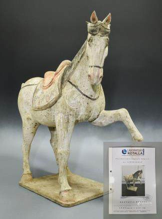 CHINESE NORTHERN WEI DECORATED TERRACOTTA HORSE- TL- tested