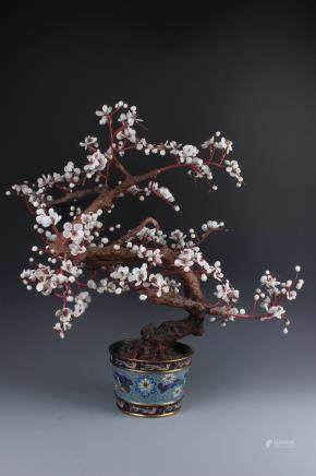 A Chinese Cloisonne  Bonsai with Multi-color precious Stones