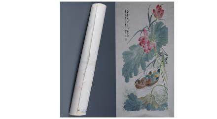 A Chinese  Painting Scroll Depicting Aix galericulata Swmming amongst the lotus in the river  Signed by Shen xiaoqin