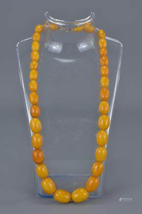 String of Butterscotch Amber Beads comprising 37 Graduating Ovoid Beads, approx. 24 grams