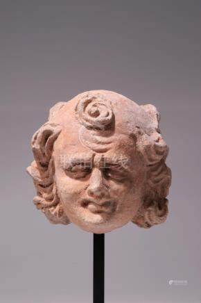 HEAD OF A YOUTHFUL NOBLE MAN