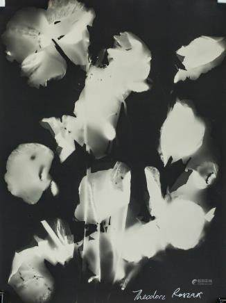 Theodore J. Roszak US-Polish Photogram on Paper