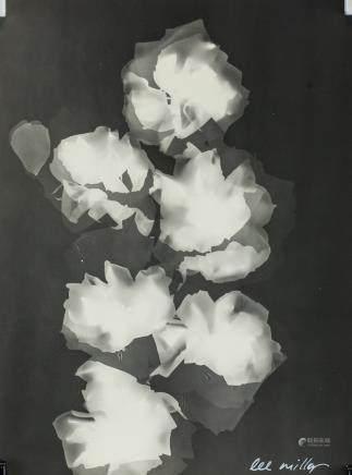 Lee Miller American Modernist Photogram