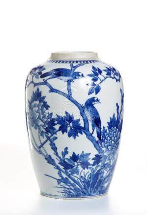 Chinese Blue and White Ovoid Vase
