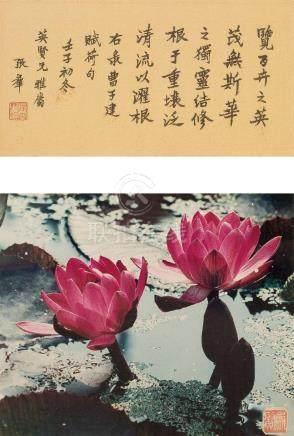 HU CHONGXIAN, LOTUS PHOTOGRAPH AND A CALLIGRAPHY