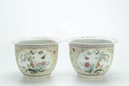 Superb pair famille rose planters, 19th C.