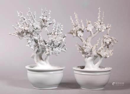 2 Chinese Blanc de Chine Porcelain Hawthorn Plants